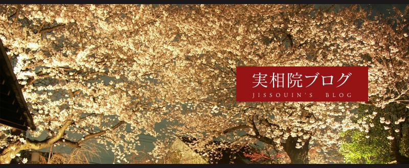 main_blog.jpg